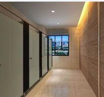 公共卫生间隔墙卫生间装修3D效果模型