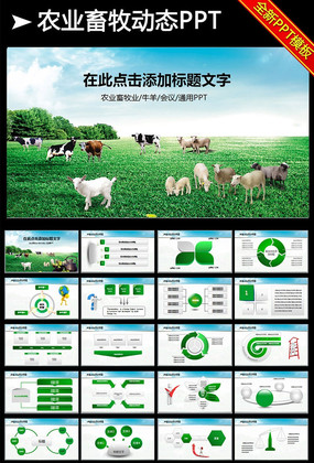 畜牧业乳业农场养殖农业奶牛PPT模板