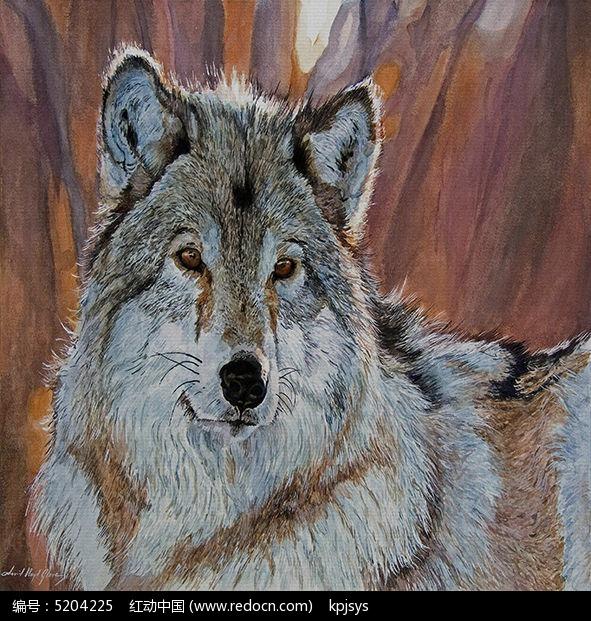 动物装饰纹样狼