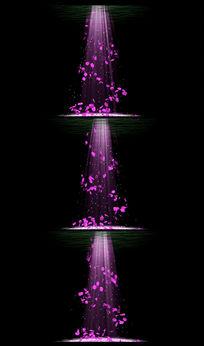 LED浪漫花朵飘落视频素材