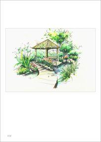 景观园林手绘 PSD