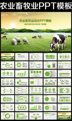 生态农场牧场农业养殖新农村牛奶奶牛PPT