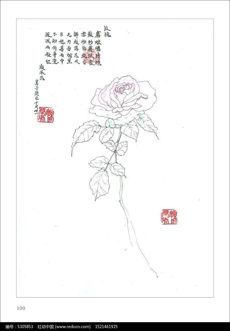 手绘玫瑰花_卡通图片/插画图片素材