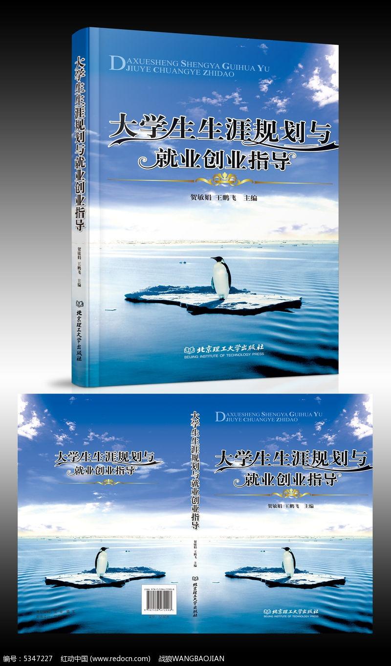 大学生生涯规划与就业创业指导书籍画册封面设计图片