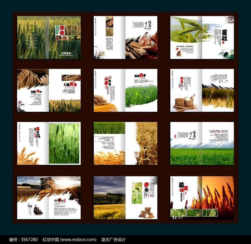 粮食画册设计模板图片