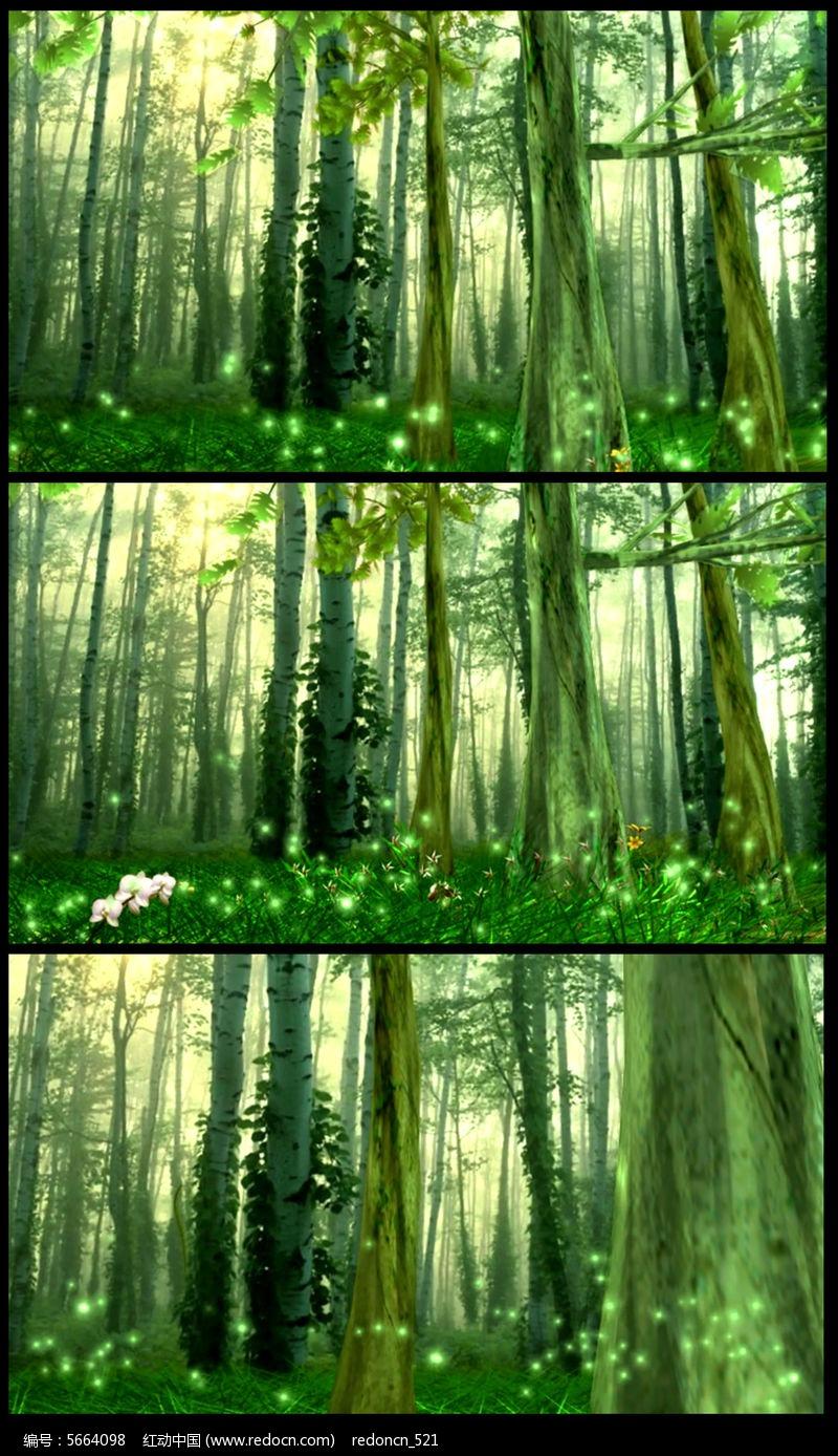 绿色森林萤火虫飞舞视频图片