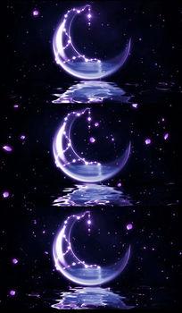 唯美月亮花瓣雨动态LED视频