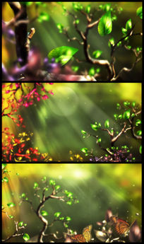 唯美奇妙森林视频