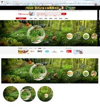 绿色天然药材淘宝首页banner PSD