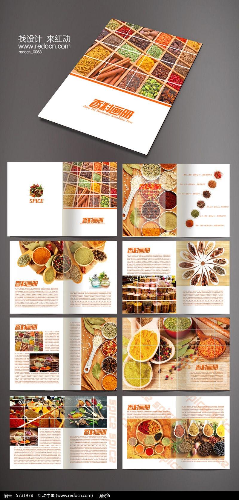 原创设计稿 画册设计/书籍/菜谱 企业画册 宣传画册 调料版式设计画册图片