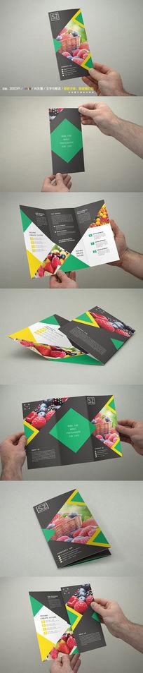 时尚水果三折页模板