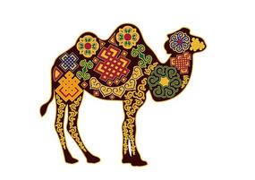 内蒙古骆驼