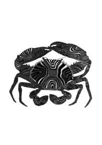 螃蟹 PSD