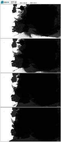 动态水墨视频素材