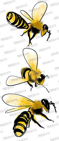 简单手绘pop海报 蜂蜜销售