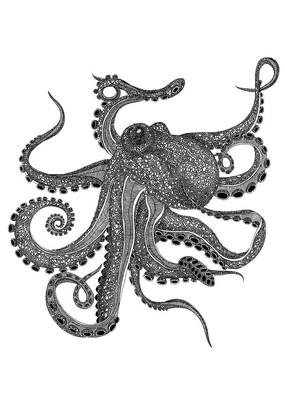 章鱼插画 PSD
