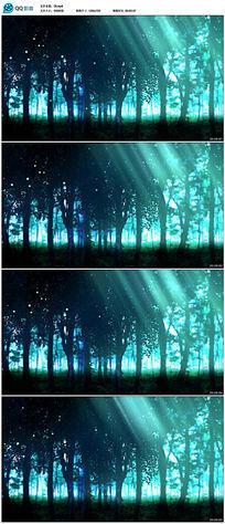 唯美森林背景视频