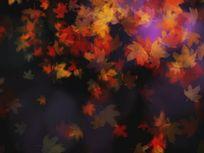 晚会情景剧用秋季枫叶树叶led视频素材