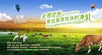 草原牛羊海报