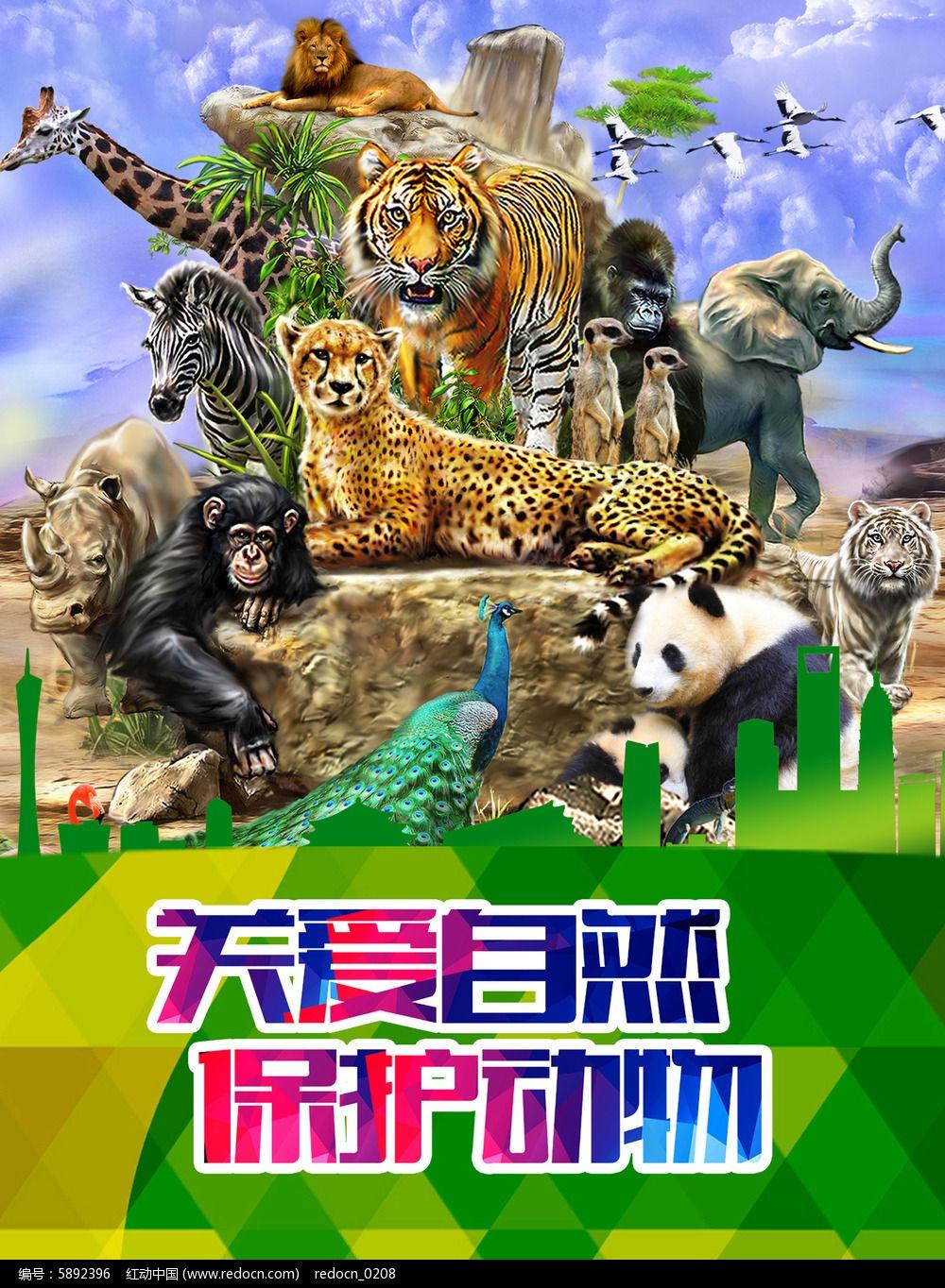 原创设计稿 海报设计/宣传单/广告牌 海报设计 保护动物海报  请您图片