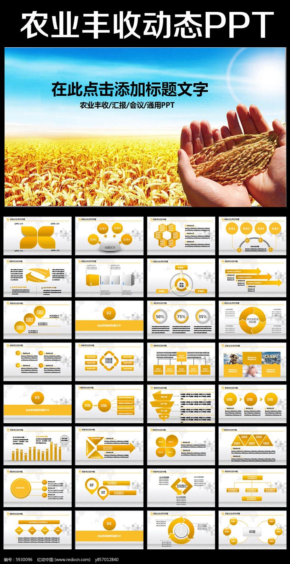 生物科技农业种植水果蔬菜粮食作物PPT图片