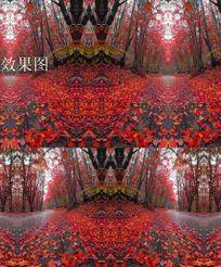 枫叶林飘落的枫叶视频背景