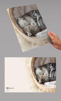 萌猫咪封面