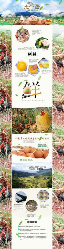 淘宝农家土鸡蛋详情页描述模板