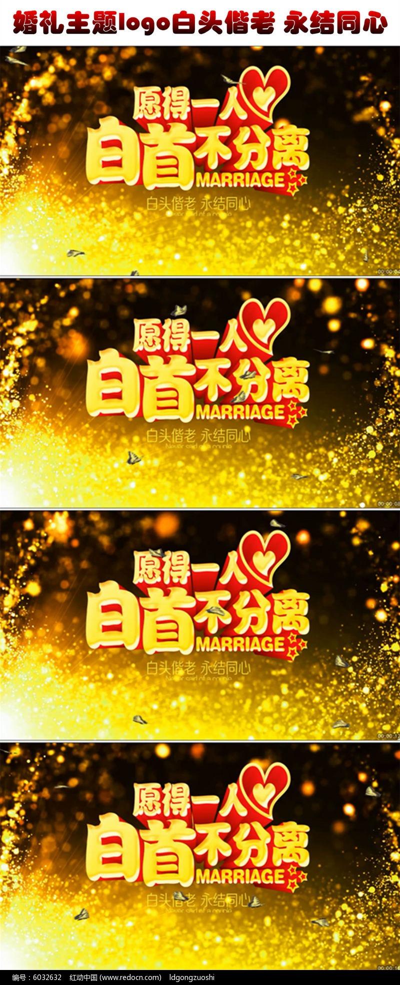 唯美大气欧式婚礼主题logo白头偕老永结同心婚礼婚庆led视频素材图片