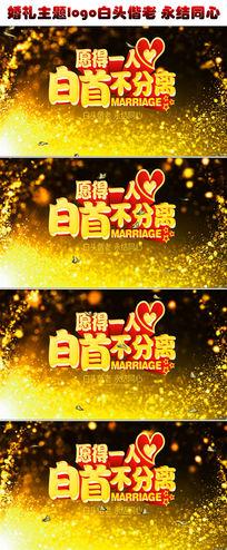 唯美大气欧式婚礼主题logo白头偕老永结同心婚礼婚庆led视频素材