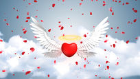 天使翅膀红心飘落视频