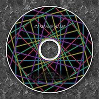 炫彩边框线花时尚光盘设计