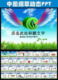 中国烟草烟草局工作总结计划PPT模板
