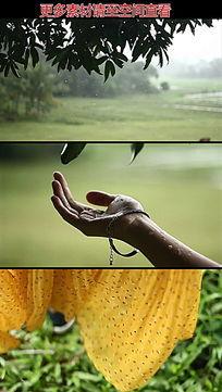 美女伸手接树叶雨滴高清实拍视频素材