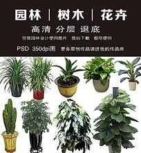 园林绿化工程花卉素材下载