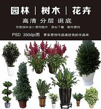 园林绿化psd花草树木素材大全
