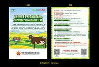保险公司养殖保险宣传单页