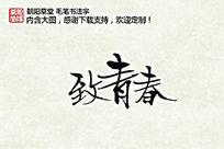 致青春纪念册手写字
