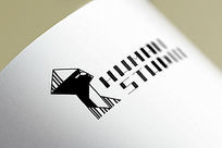 提案贴图文件画册标志展示logo效果图