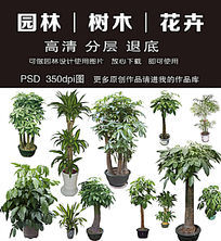 园林树木绿化工程