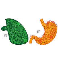 肺胃矢量图 AI