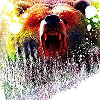 凶猛的熊插图