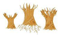 创意矢量大树素材 AI