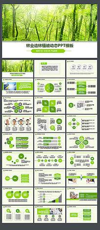 绿色环保低碳植树林业绿化ppt模板