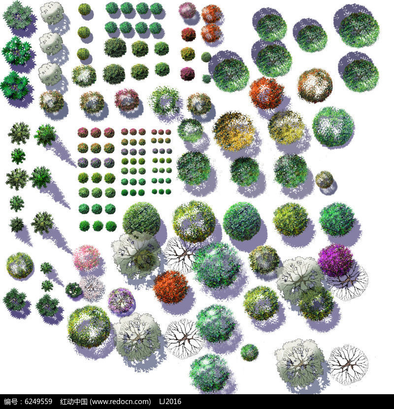 ps彩色平面乔木植物素材psd图片