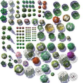 PS彩色平面乔木植物素材PSD