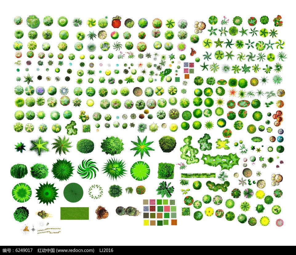彩色平面手绘植物素材psd图片