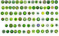 好看的手绘植物平面素材PSD