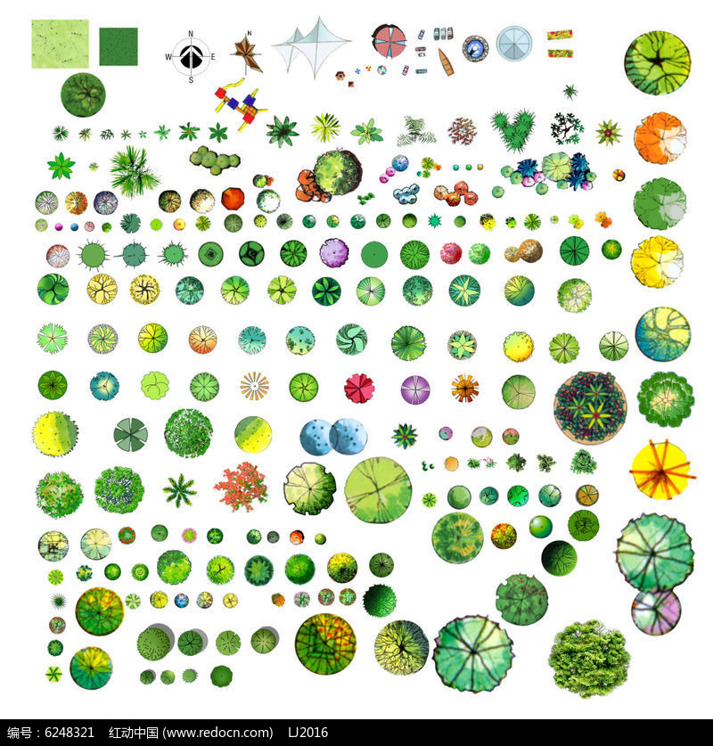 手绘植物组合平面素材PSD图片