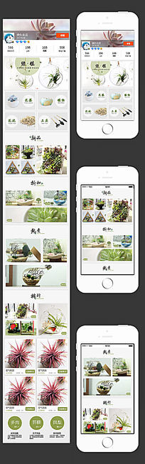 多肉植物创意手机店铺首页